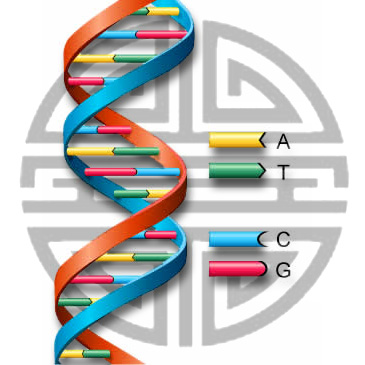 DNA Helix with Chinese Longevity character